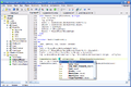 Enhanced Inno Setup Compiler - Editor.png